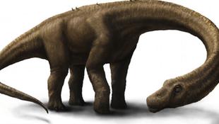 Új dinoszauruszfaj maradványaira bukkantak Tanzániában