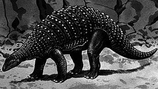 Dinoszaurusz lábnyomra leltek NASA egyik központjában
