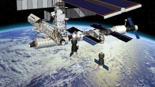 Hihetetlen biológiai csoda: egy év a világűr fagyában