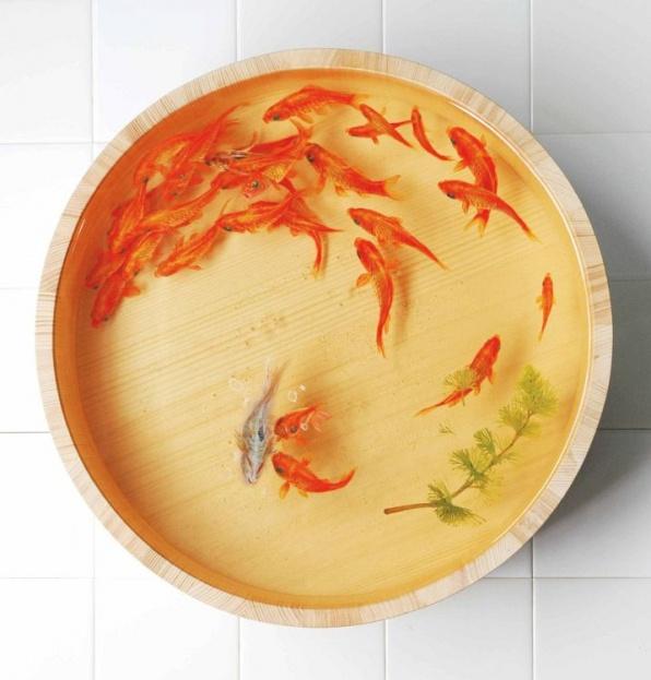 Forrás: Goldfishing