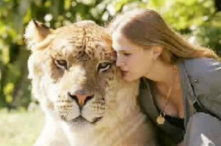 Jaj, cica eszem azt a csöpp kis szád!
