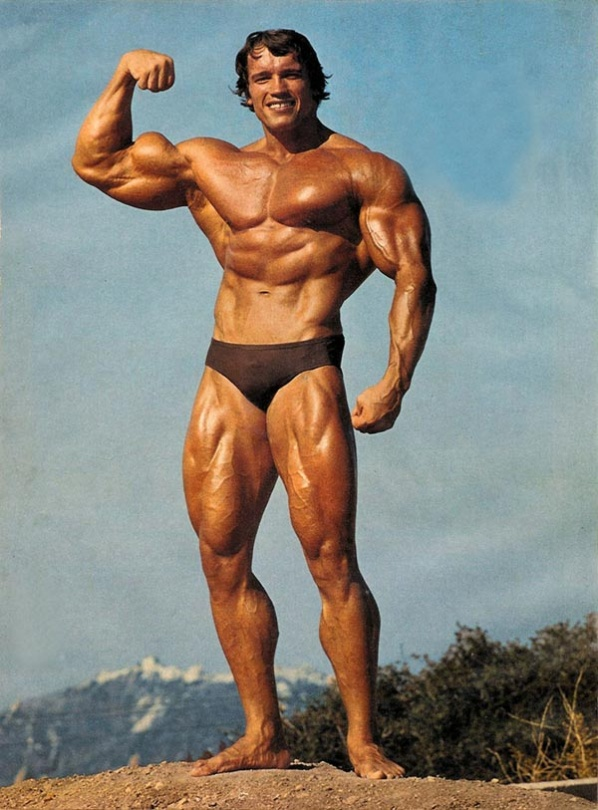 Dr. Arnold, az elnök.
