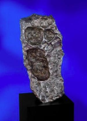 A Sikoly becenevű meteorit (ár: 175-225 ezer dollár)