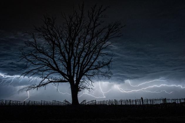 XIII. A természet féktelen energiái, zabolátlan erők - Daróczi Csaba: Mordor határában