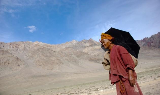Sütő Zsolt: Tibetvörös