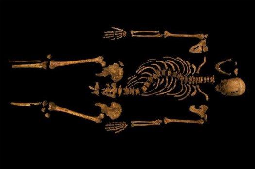 Ezért dúl a harc: III. Richard maradványai (Fotó: popsci.com )
