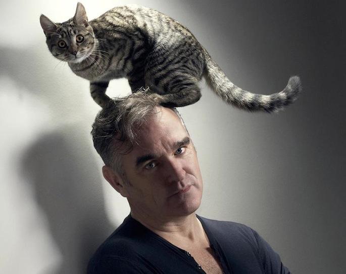 Az állatvédő Morrissey (Fotó: factmag.com)