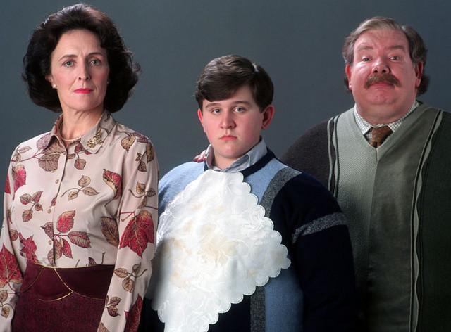A Dursley család