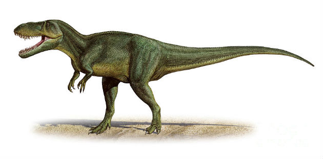 Torvosaurus - kép:Szergej Kraszovszkij