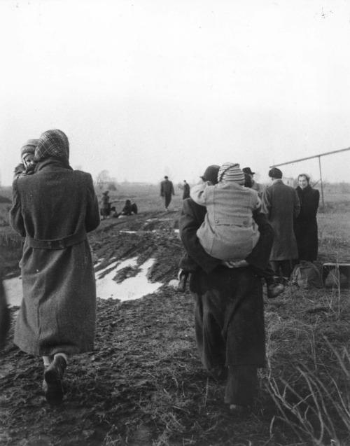 Ata Kandó: 1956-os menekültek