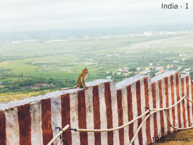 Fotó: Nishanthi (16), Russ Foundation az indiai Madurai közelében