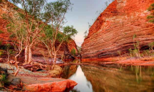 Fotó: http://www.sciencealert.com.au/Tim Pryce Photography/Shutterstock
