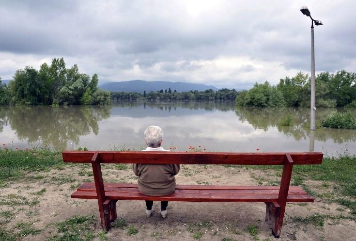 Az áradó Duna Sződligetnél (MTI Fotó: Máthé Zoltán)