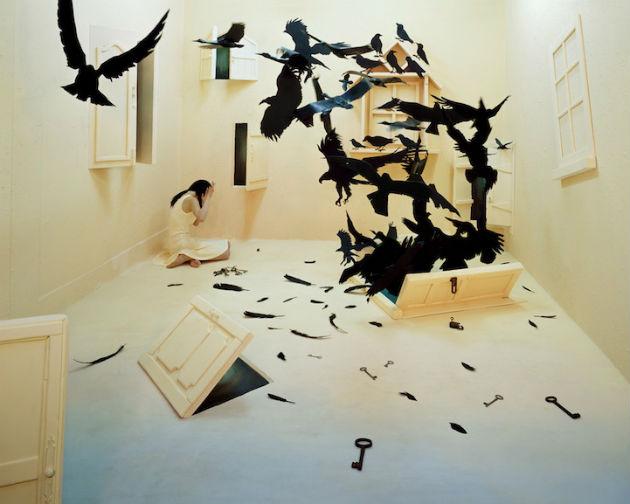 Fekete madarak (Fotó: mymodernmet.com/ Jee Young Lee)