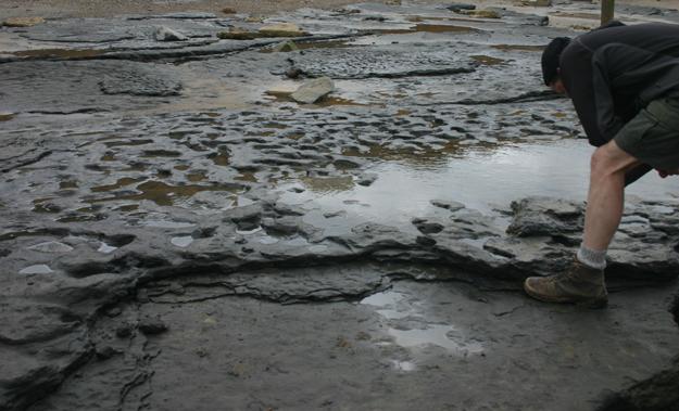 Fotó: archaeology.co.uk