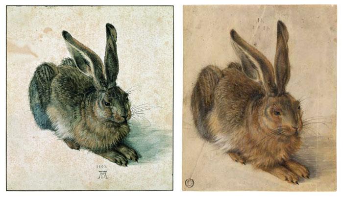 Nyúl Dürertől 1502-ből (a bal oldalon) és Hoffmanntól 1582-ből (a jobb oldalon)