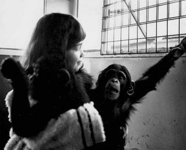 Vivian Kubrick a filmben