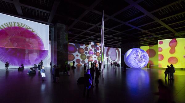 A nap burjánzása kiállítás Berlinben (Fotó: Peter Müller/Bild-Zeitung/news.artnet.com)