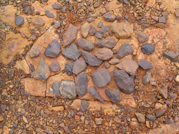 Fotó: cope.co.za