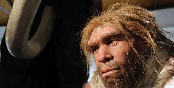 Neander-völgyi ember élethű modellje a Magyar Természettudományi Múzeumban (MTI Fotó: Manek Attila)