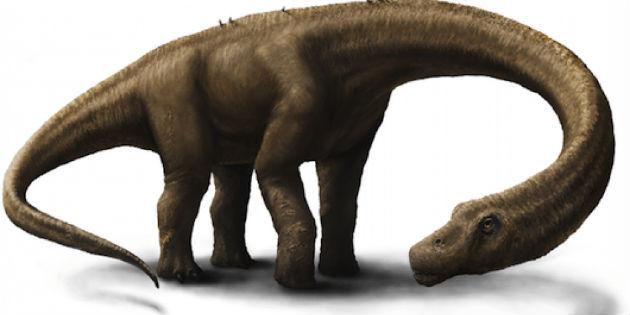 Kép: iflscience.com