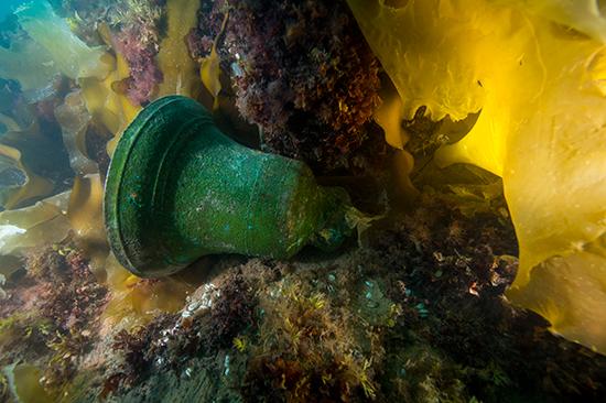 fotó: factsandopinions.com