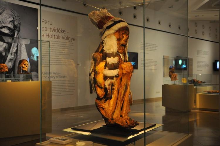 Múmiavilág kiállítás (fotó: jozsefvaros.hu)