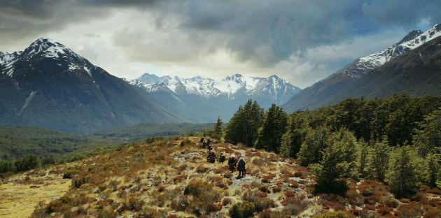 Fotó: wildsoundmovies.com