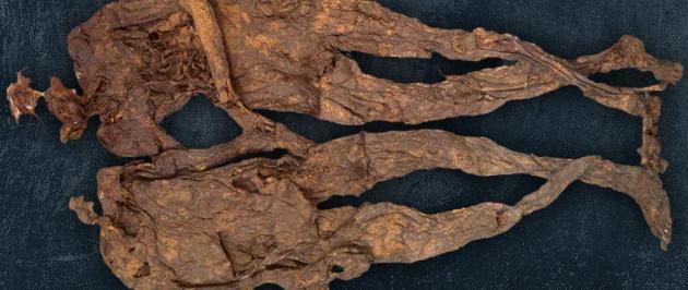 Lápi múmiák (Fotó: mumiavilag.hu)