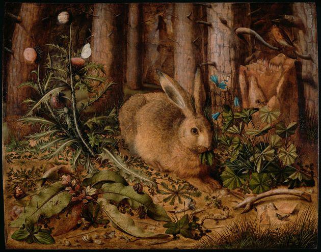 Hans Hoffman: Mezei nyúl az erdőben, 1585 (Forrás: wikipedia.org)