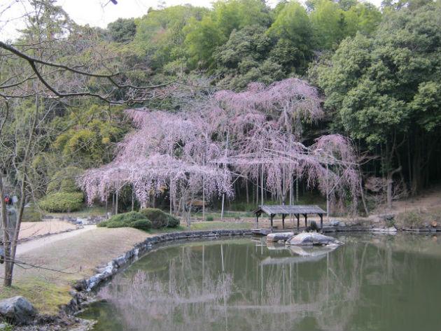 Fotó: japankalligrafia.hu
