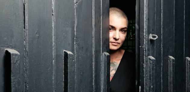 Fotó: qthemusic.com