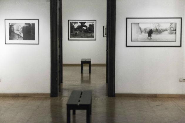 Slyvia Plachy kiállítás (Fotó: Németh Dániel)