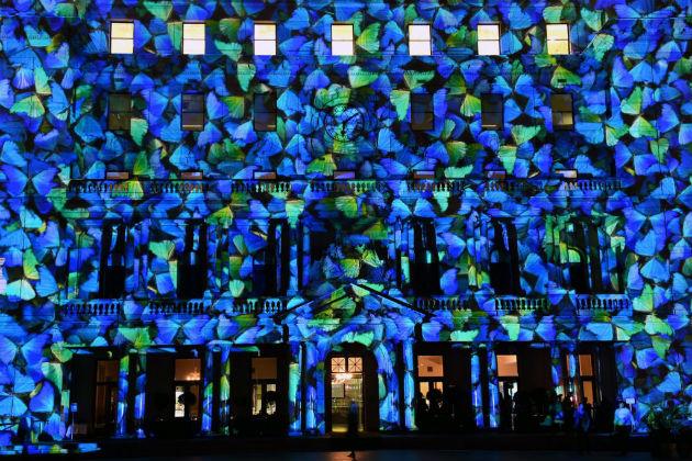 A kék virágokba öltözött Vámház. (Fotó:hirado.hu/EPA)