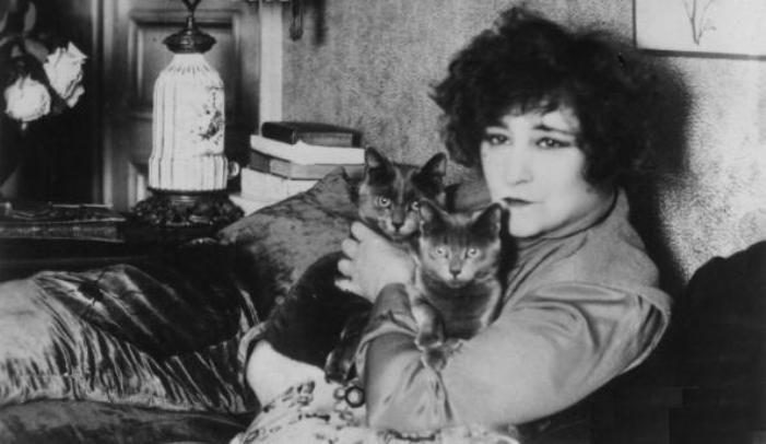 Az írónő szeretett macskái körében