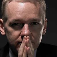 Wikileaks a porcelánboltban