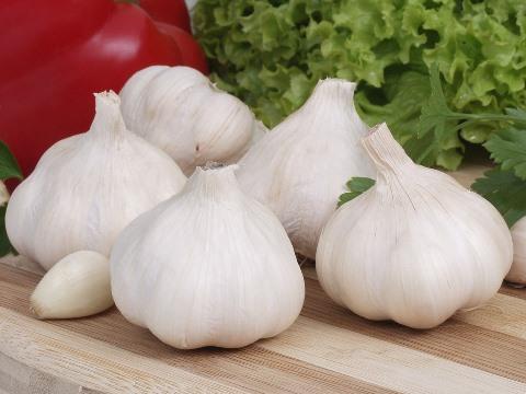 garlic-731001_960_720.jpg