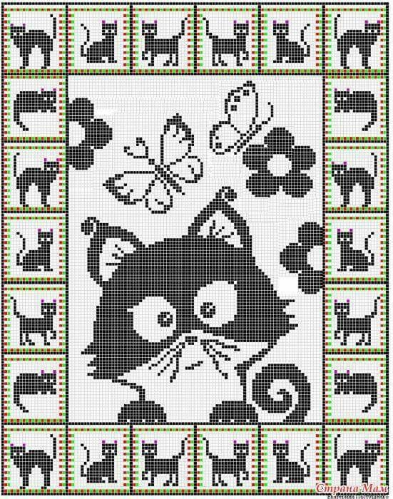 macskusz.jpg