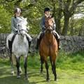 Egér helyett ló - lovasterápia netfüggőség ellen