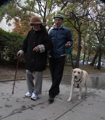 István édesanyja,István és Szása kutya sétálnak a parkban