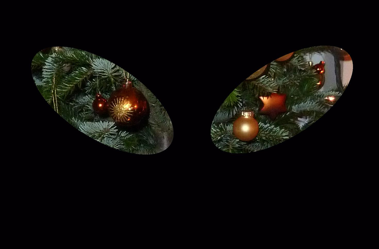 ez egy érdekes kép: fekete az egész, csak két kis macsakszem alakú nyílás látszik, benne egy fedíszített karácsonyfa: mintha egy cica a díszekre fókuszálna
