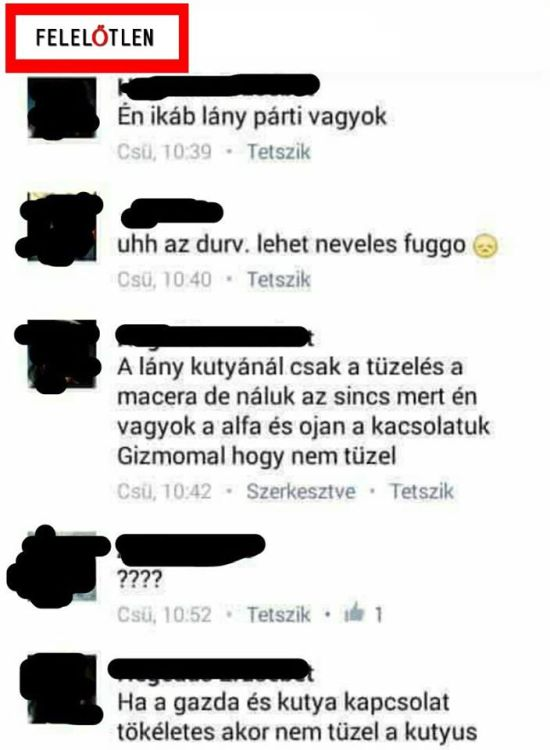 tuzel_1.jpg