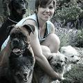 Kutyák és Én