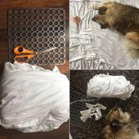 Szuper Kutyajáték a Lakásba - Snuffle Mat