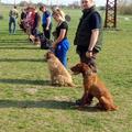 2015-04-12 vasárnapi kiképzés fotói