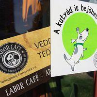 With this sticker, Labor Café finally validated as a dog friend café. Thanx EB OVO! - A Labor Café hivatalosan is kutyabarát hely. Köszi EB OVO Egyesület! #ebovo #laborcafe #nyiregyhaza #dogfriendly #charity #charitycafe