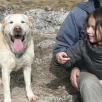 A kutyáknak is jár a szülinap?
