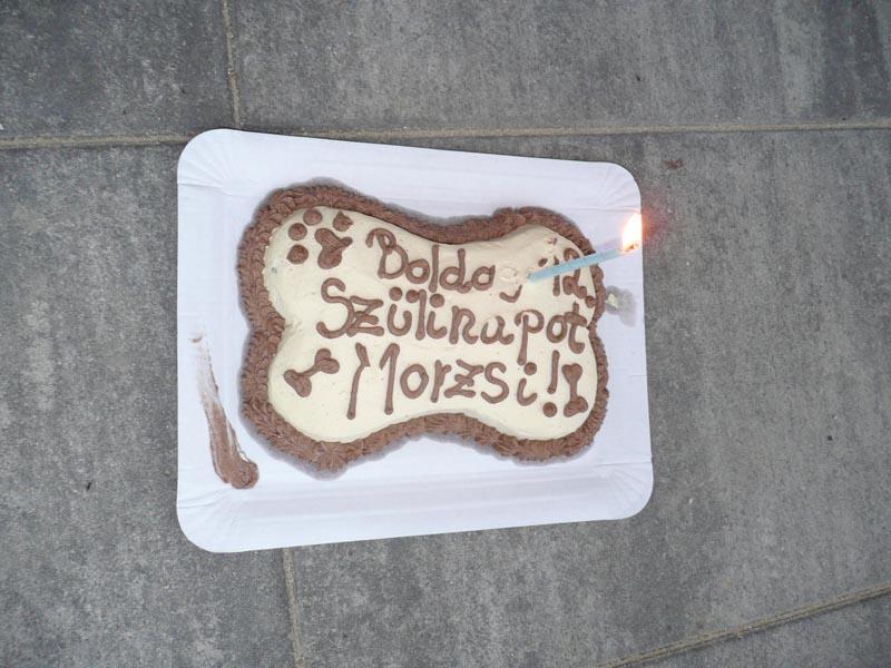morzsi-torta-1.jpg