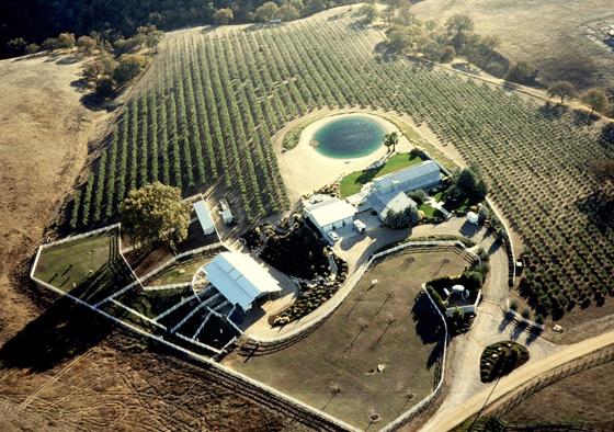 olivafarm.jpg