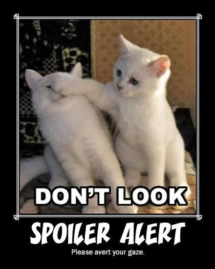 spoiler-alert-kittens.jpg